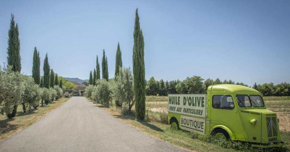 Domaine du Moulin à huile Saint Augustin@site internet moulin augustin