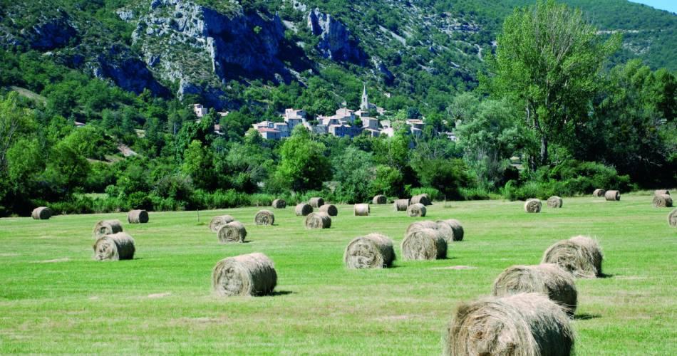 Le village de Monieux@P. Merlette Lagarde