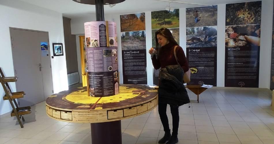 Musée de la truffe du Ventoux@OTI Ventoux Sud