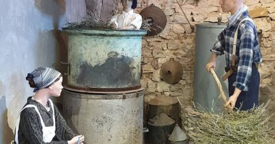 Distillerie Aroma'Plantes@Arôma Plantes