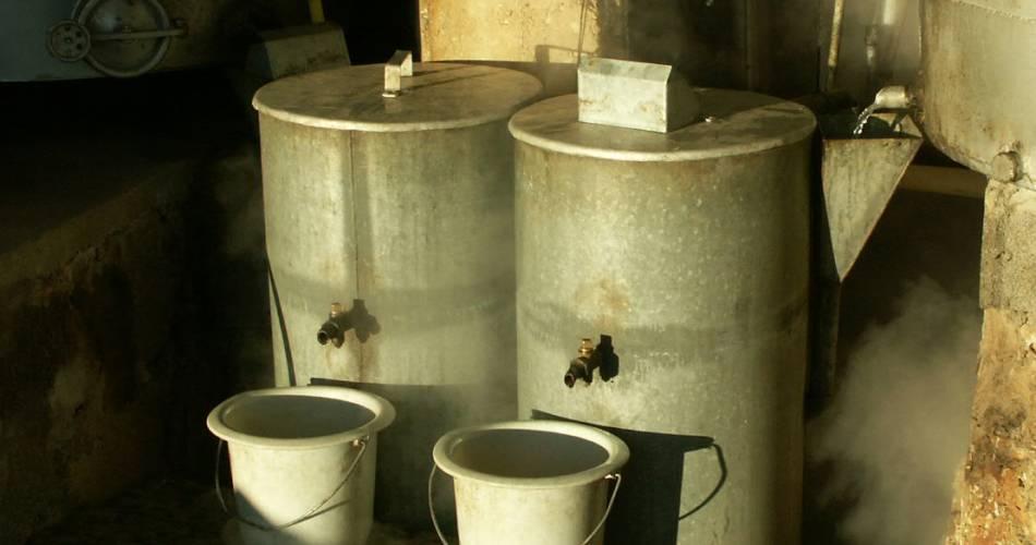 Distillerie Vallon des Lavandes@S. Barjot
