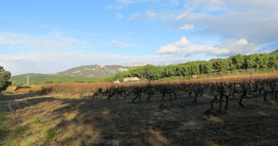 Gîte on a farm@Droits gérés bouziges
