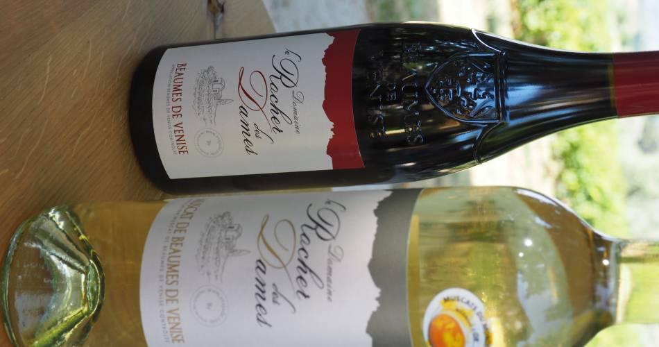Domaine du Rocher des Dames@Domaine du Rober des Dames