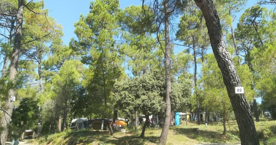 Camping Municipal la Pinède@Camping la Pinède