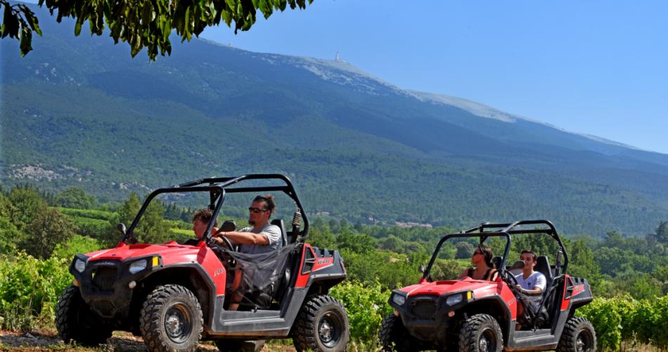 Les Vignerons du Mont-Ventoux@DAMIAN