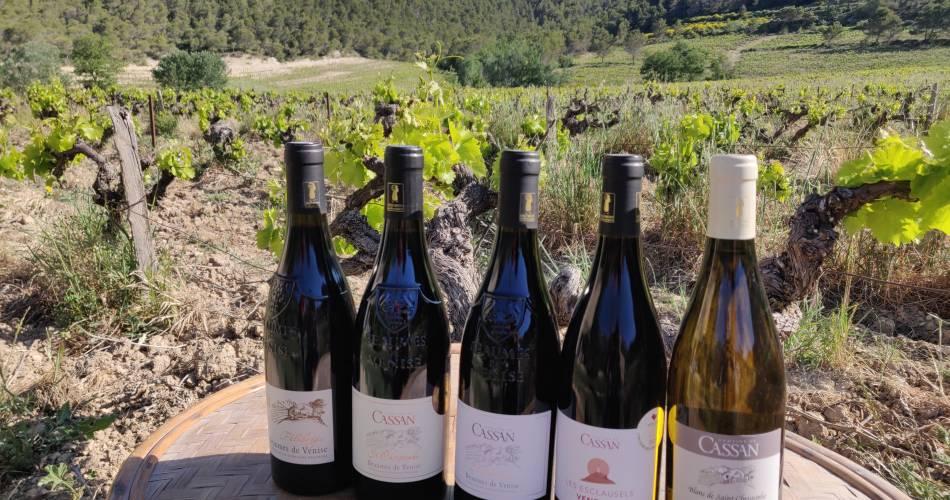 Domaine de Cassan@Famille Croset