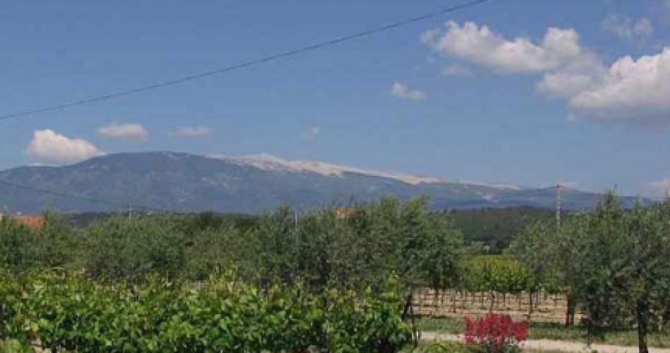 Le Mont Ventoux@Droits gérés M. Cibrario