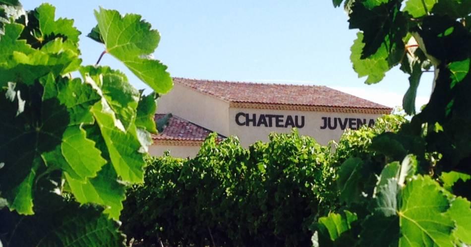 Château Juvenal@Château Juvenal
