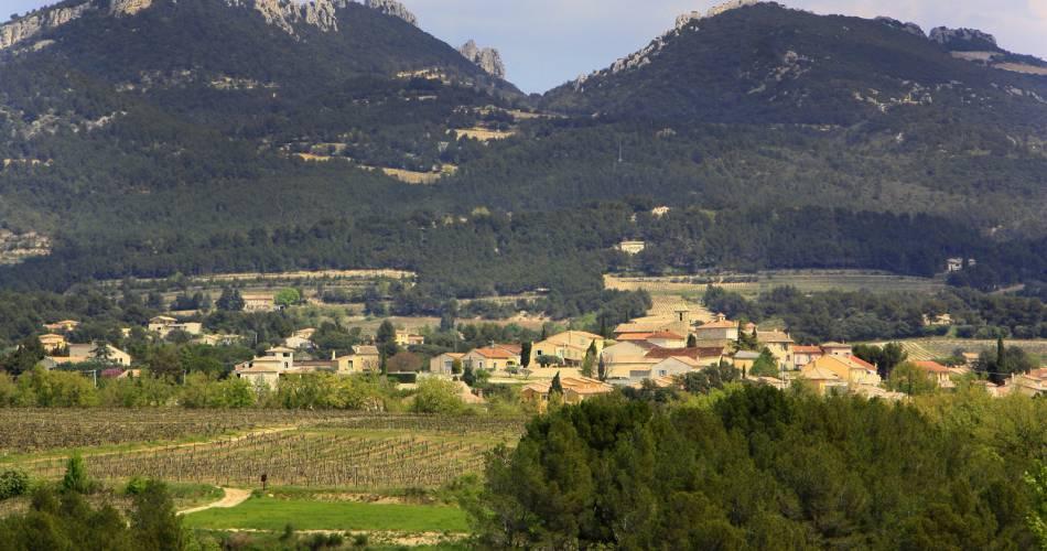 Circuit pédestre - Parcours du Vignoble de Vacqueyras@HOCQUEL Alain - Vaucluse Provence