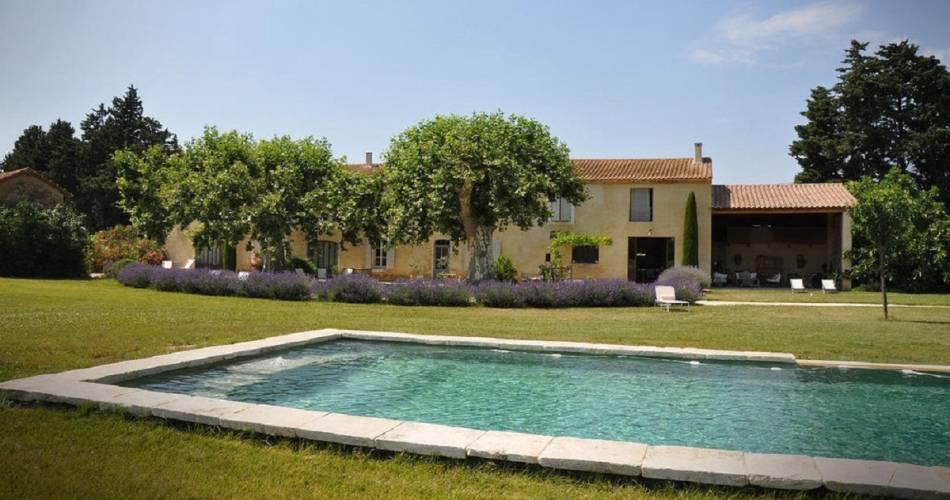 La Garance en Provence@Droits gérés M. Sanglier