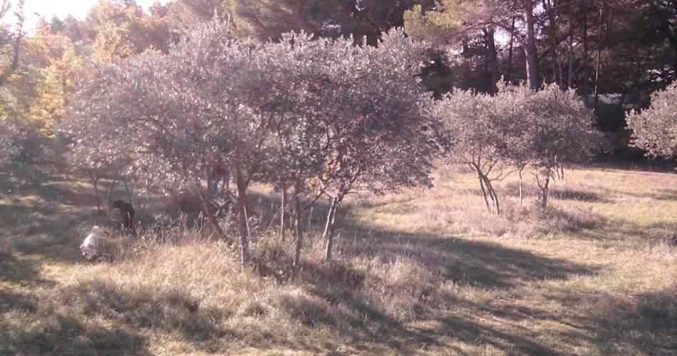 Domaine de la Gasqui - Vins Bio@Droits gérés Domaine de la Gasqui