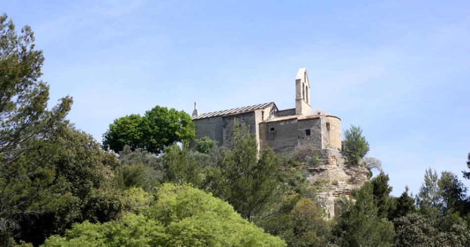 Hike - Circuit de Marcouly@HOCQUEL Alain - Vaucluse Provence