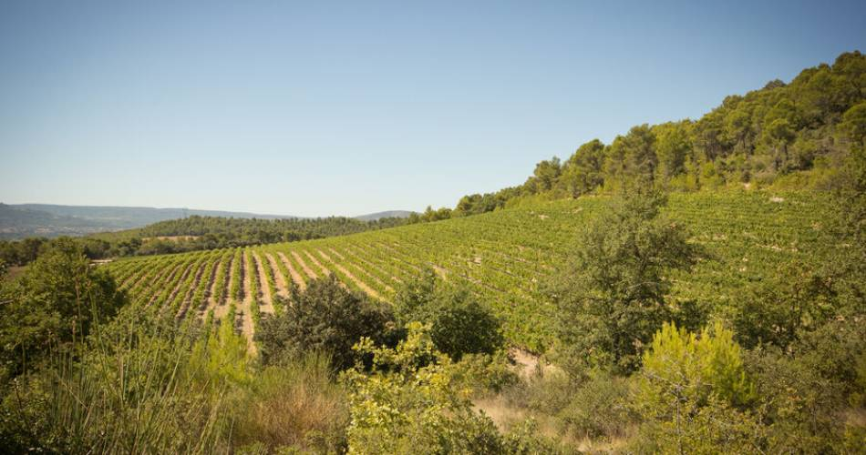 Château Val Joanis@Val Joanis Pertuis