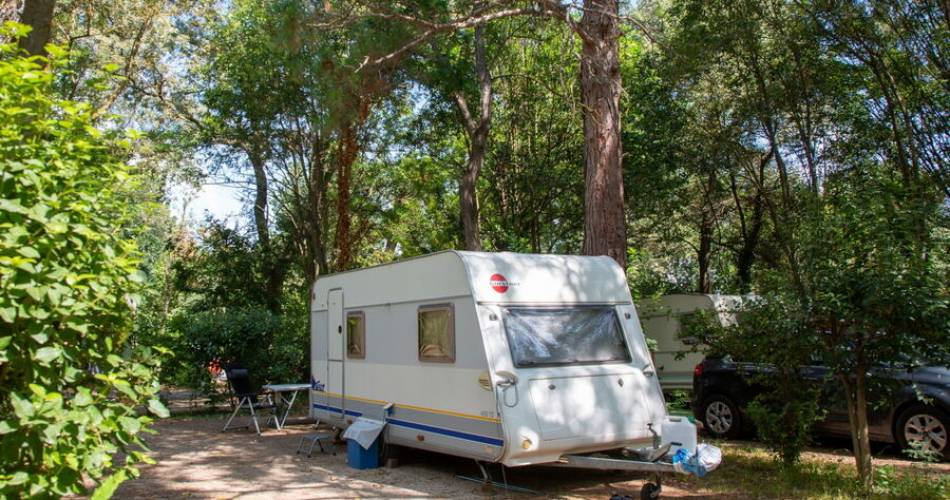 Camping du Pont d'Avignon@©fredericmartin