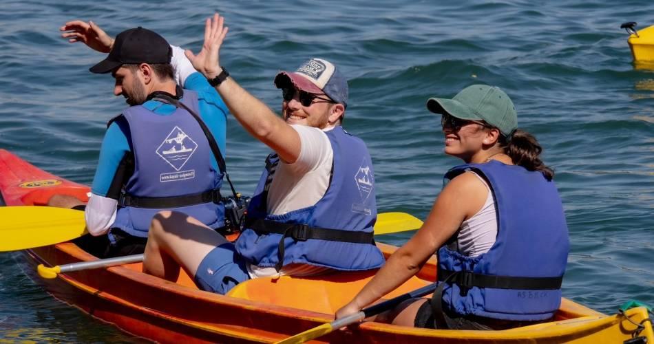 Provence Organisation@