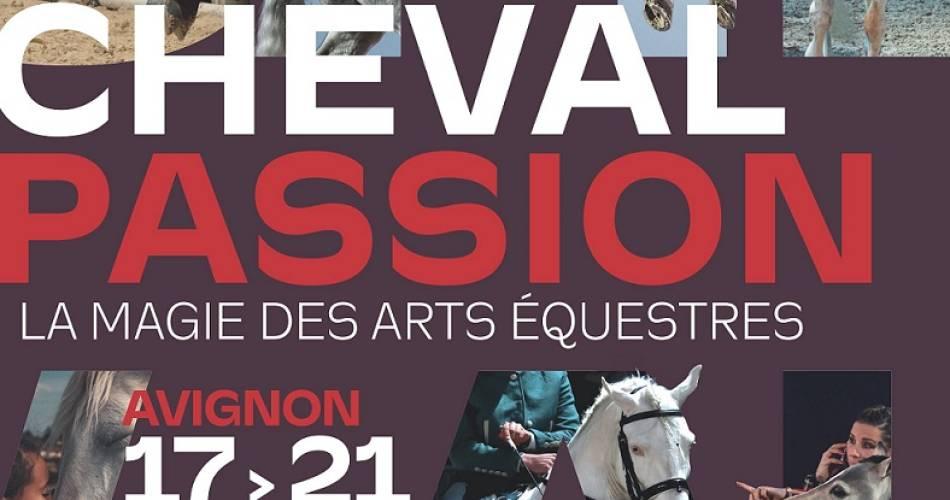 Cheval Passion - 36e édition@Droits gérés © FMariotti – JRey – Cheval Passion/Avignon Tourisme