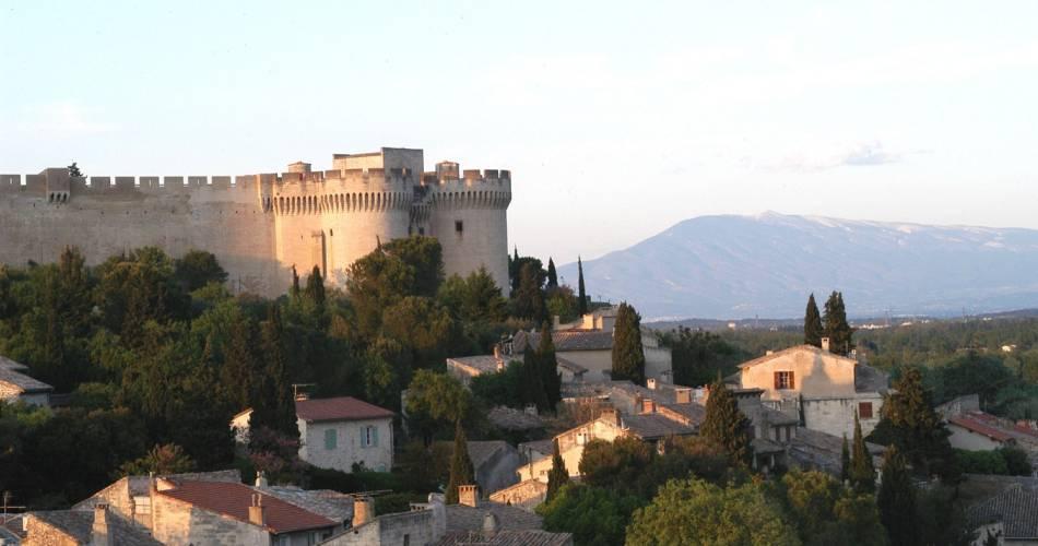 Fort Saint-André@Droits gérés Emmanuel Marre - Ville de Villeneuve les Avignon