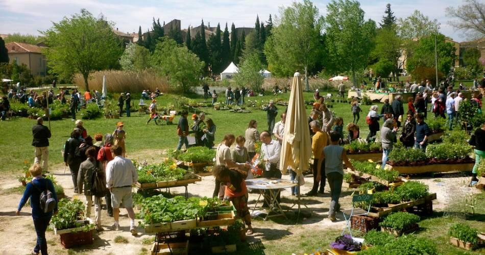 Rare Plants and Natural Gardens@Droits gérés Noëlle Lambert