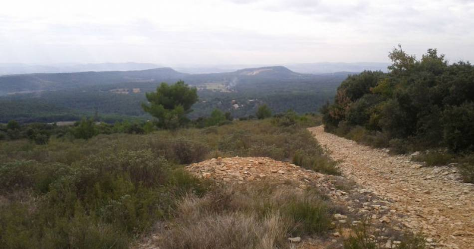 8 - Tour du Massif d'Uchaux à vélo@Droits gérés AKERMANN Muriel - Coll. ADT Vaucluse