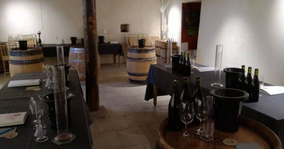 Make your wine at  Château Maucoil@Maucoil