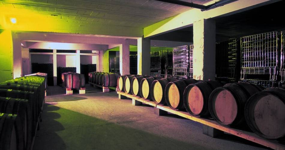 Wine tourism discovery@Famille Quiot