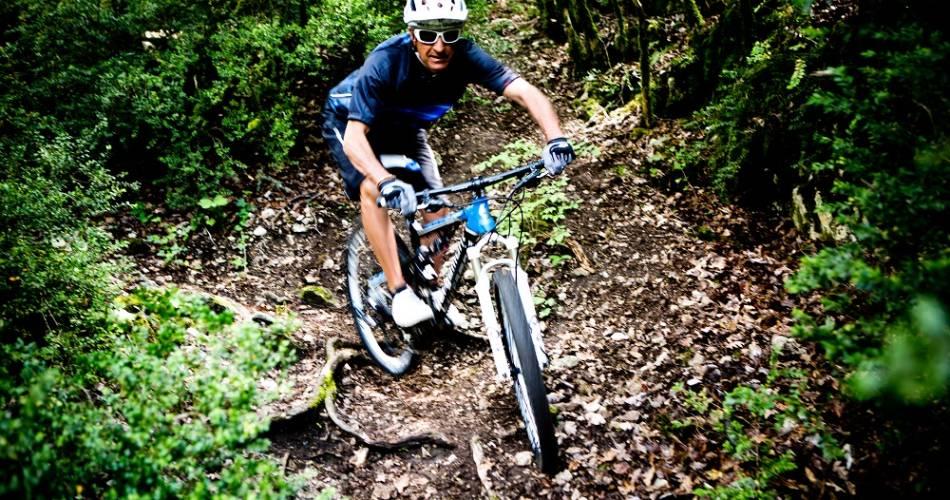 Ventoux Bikes Trip@Ventoux Bikes Trip