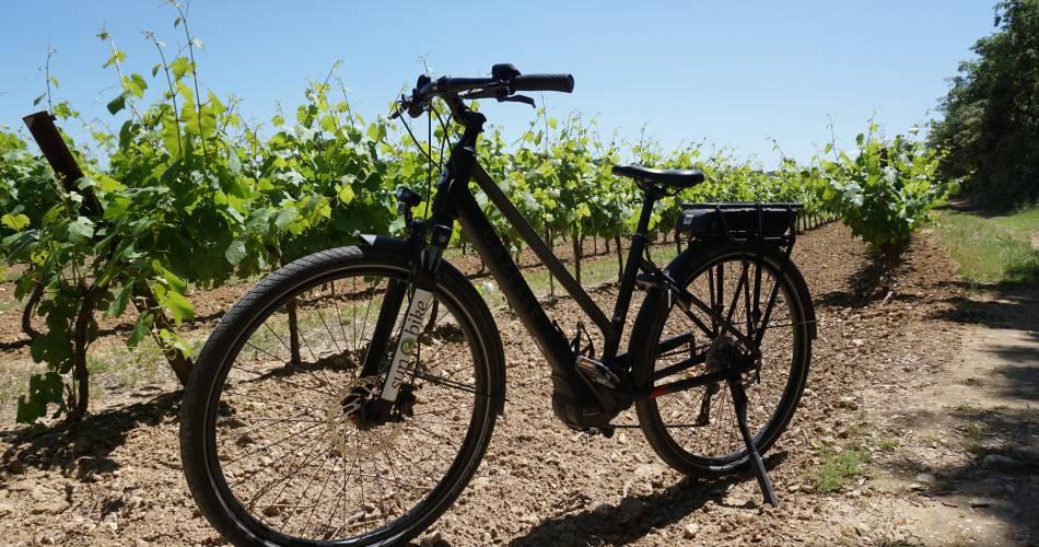 Sun-E-Bike@Sun e Bike