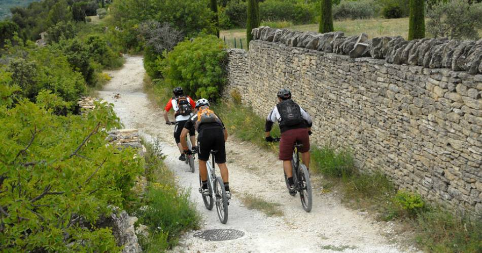 Long Distance Mountain Bike Trail, Stage 3 – From Bedoin to Aurel@W Fautre