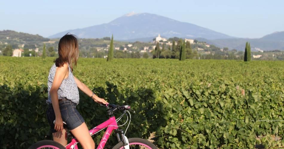 Touring the Côtes du Rhône by bike@ADTHV Provence Rhone Ventoux