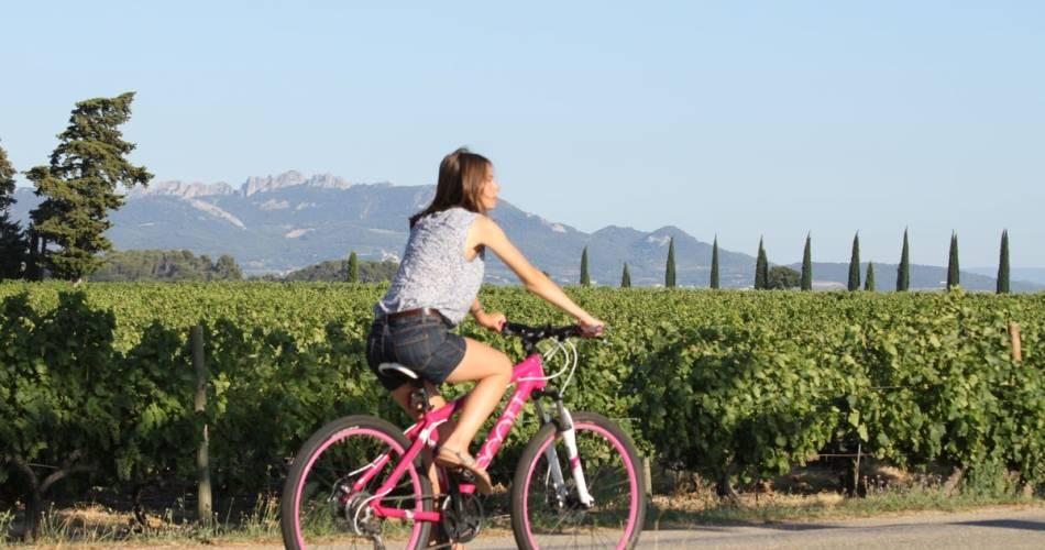 Touring the Côtes du Rhône by bike@ADT PRovence RHone Ventoux ADTHV