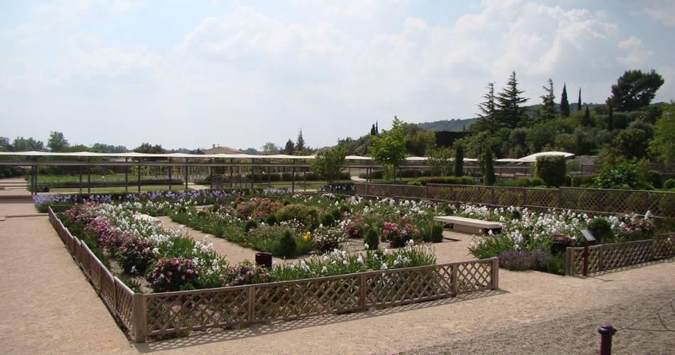 Le jardin romain de Caumont-sur-Durance@©sophielavet