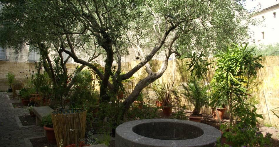 Ceccano Library Gardens@E Catoliquot