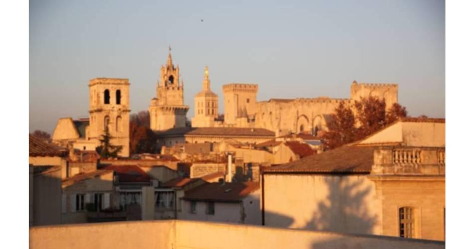A La Terrasse d'Avignon - Location de vacances@©bertrandmarchat