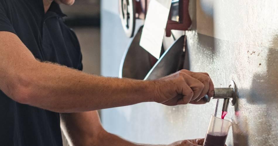 Wijngaarden le Prandou@Domaine du Parandou