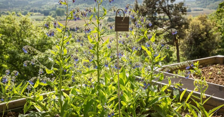 The Citadelle Botanical Garden@Coll. LA Citadelle / Damien Boschi