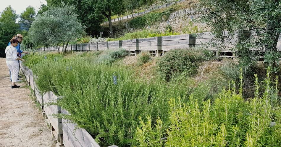 The Citadelle Botanical Garden@Coll. ADT / V. Gillet