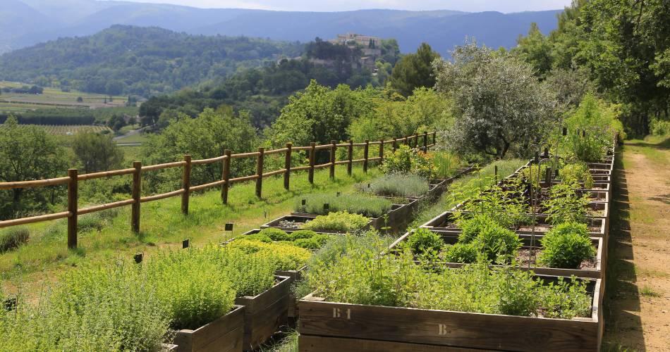 The Citadelle Botanical Garden@Coll. VPA /A. Hocquel