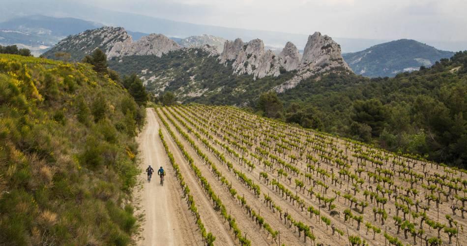 Etappe2: Malaucène/Bédoin - Überquerung des Vaucluse mit dem e-bike@Alain Hocquel - Vaucluse Provence