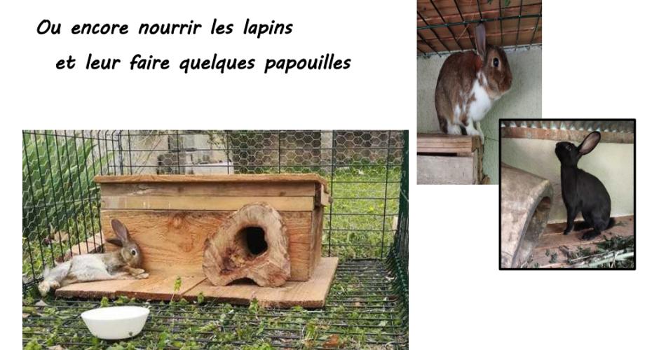 Lavande - Le Moulin des Ocres@© Amélie Mauger et Pierre Porton