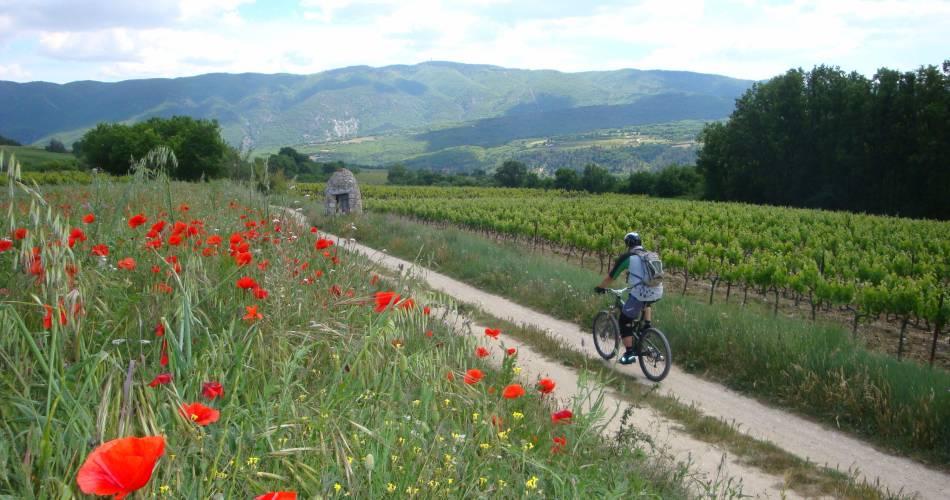 Grand Tour du Pays d'Apt en VTT e-bike@PNRL - Eric Garnier