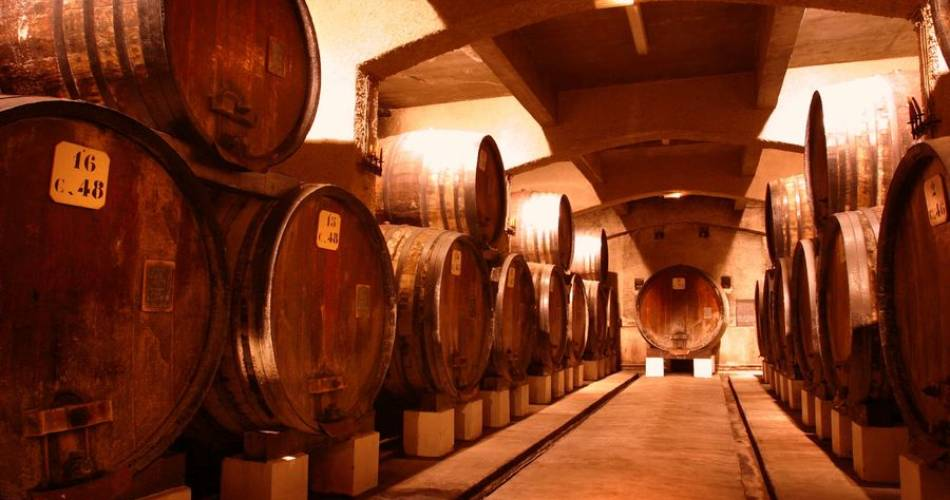 Wine cellars tour of the Cellier des Princes@Cellier des Princes