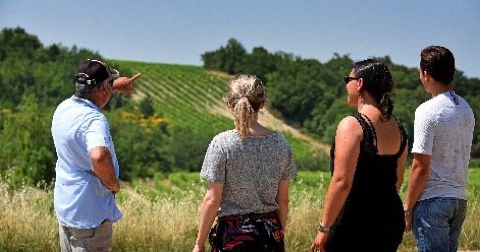Balade vigneronne à la cave des Vignerons du Mont Ventoux@Vignerons du Mont Ventoux