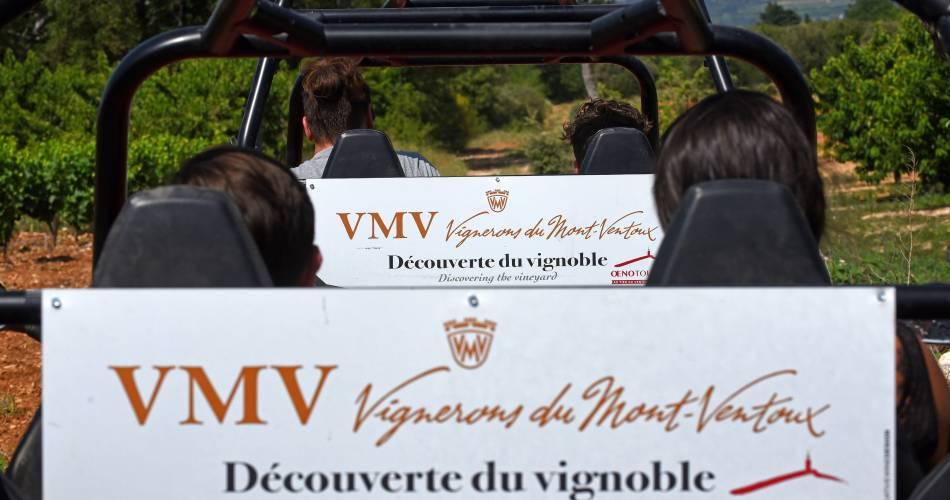 Excursion buggy à la cave des Vignerons du Mont Ventoux@Les Vignerons du Mont Ventoux