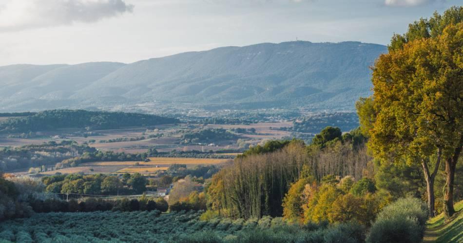 Les balades et dégustations offertes au château La Dorgonne@OT Luberon Sud Tourisme
