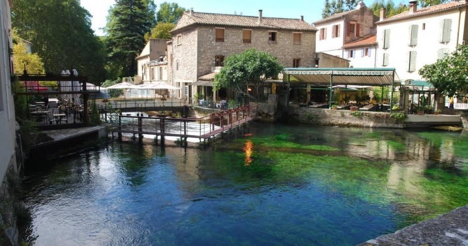 Provence Tour@©lesdanjean