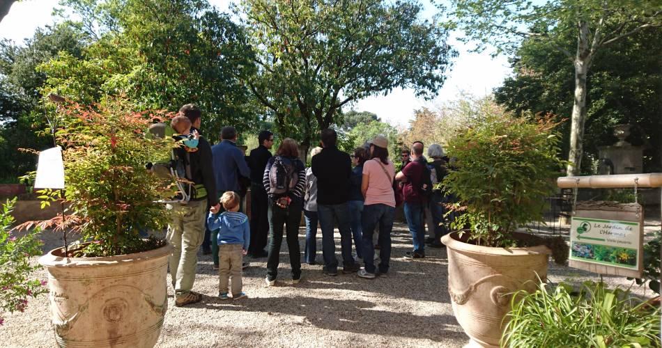 Die Gärten des Harmas von Jean-Henri Fabre@ADT Vaucluse