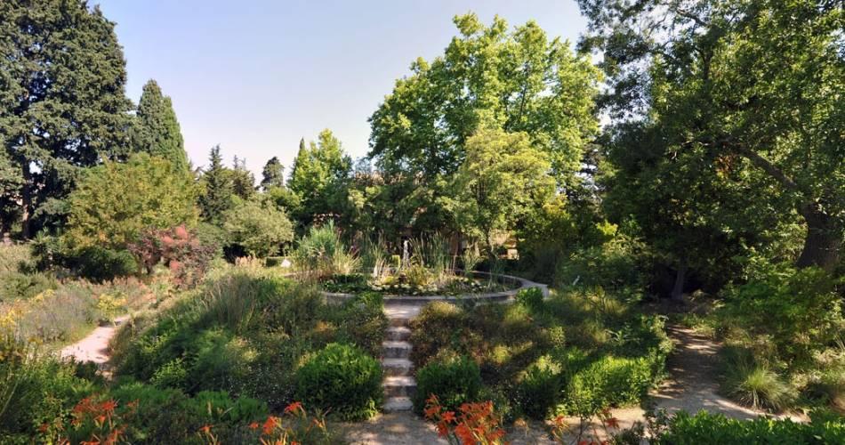 Die Gärten des Harmas von Jean-Henri Fabre@Coll. Harmas