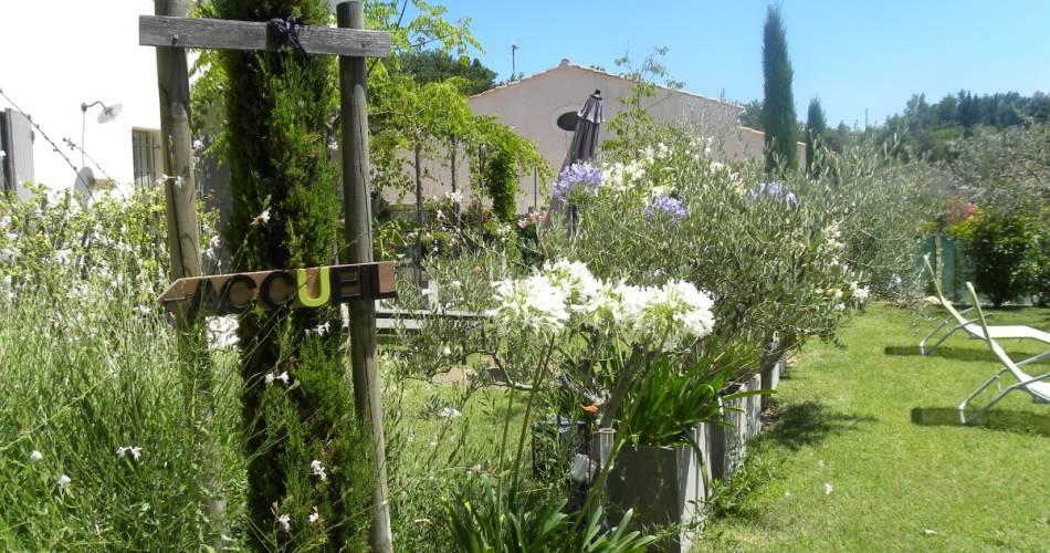 Le Jardin de Lau - Figuier@Clévacances