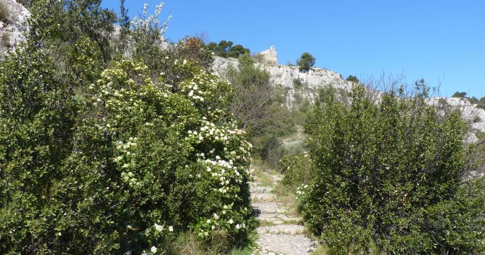 Voie romaine et Colline Saint Jacques@OT LCDP