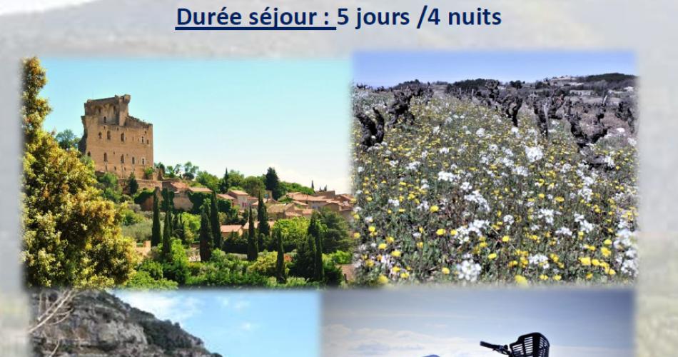 Les paysages de Provence, des vignobles à la Camargue@Sun e bike
